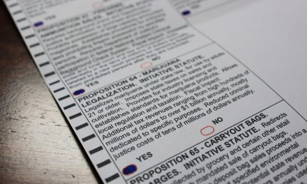 Center for Civic Design pushes for an easier, standardized ballot