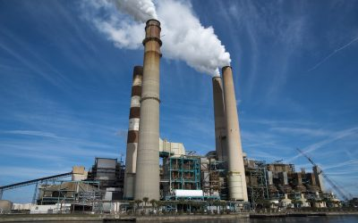 Carbon emerges as big winner of 2016
