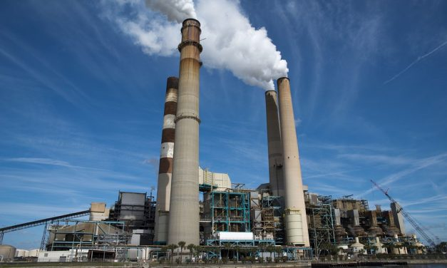 Carbon emerges as big winner of 2016