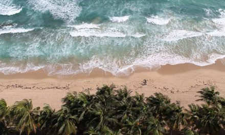 Climate change to dramatically impact Puerto Rico