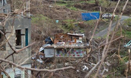 The state of the US Virgin Islands after Maria